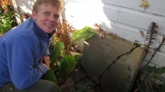 Photo: Backyard tombstone