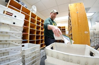 Photo: Campus Mail sorting