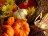 Photo: Thanksgiving bounty