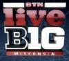 Logo: LiveBig