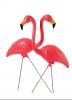 Photo: Pink flamingo