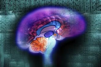 Computing and the brain