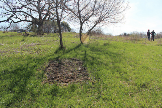 Photo: Unmarked grave in field