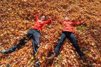 Photo: Leaf angels near Elizabeth Waters Hall