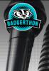 Illustration: microphone with BadgerThon logo