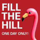 fill_the_hill_display