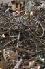Photo: Bikes confiscated by UWPD