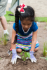 Child planting a plant