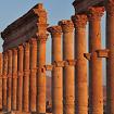 Palmyra Image