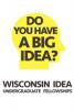 Graphic: Wisconsin Idea Fellowships logo
