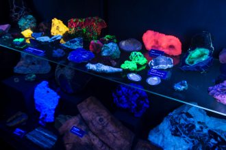 Photo: Colorful florescent minerals in Geology Museum display